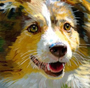 Susan Wiersema pet portraits @ Winslow Art Center