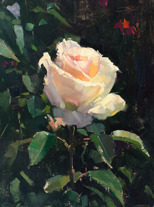 patrick-saunders-painting-floral-white-rose-aglow